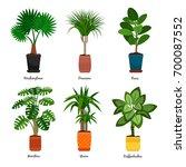 decorative houseplants in pots... | Shutterstock .eps vector #700087552