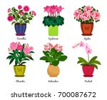 flowerpots and houseplant... | Shutterstock .eps vector #700087672