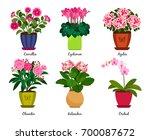 flowerpots and houseplant... | Shutterstock .eps vector #700087672
