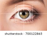 eye monitoring virtual reality. | Shutterstock . vector #700122865