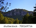 landscape of mountains and pine ... | Shutterstock . vector #700169716