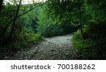 the forest road in the twilight | Shutterstock . vector #700188262