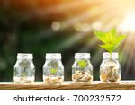 coin in the bottle and plant... | Shutterstock . vector #700232572