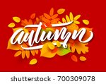 autumn banner background with... | Shutterstock .eps vector #700309078