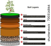 soil layers infographic diagram ... | Shutterstock .eps vector #700316866