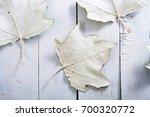 autumn aspen leaves backside on ... | Shutterstock . vector #700320772