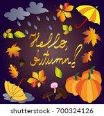 hello  autumn. autumn themed... | Shutterstock . vector #700324126