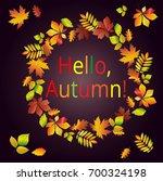 hello  autumn. multicolored... | Shutterstock . vector #700324198