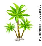 tropical coconut palm trees ... | Shutterstock .eps vector #700325686
