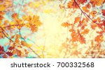 Autumn landscape. Autumn tree leaves sky background.