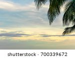 palm leaves against the sky  ... | Shutterstock . vector #700339672