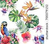 beautiful bright lovely... | Shutterstock . vector #700379152