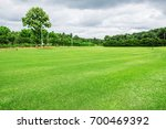 lawn and trees in the garden... | Shutterstock . vector #700469392
