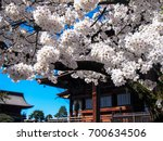 nagano  japan. april 2017.... | Shutterstock . vector #700634506