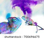 chameleons   and colors on... | Shutterstock . vector #700696675