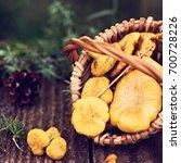 mushrooms chanterelle in the... | Shutterstock . vector #700728226