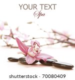 spa | Shutterstock . vector #70080409