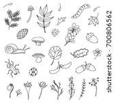 forest doodle set   Shutterstock .eps vector #700806562