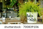 make a wish  | Shutterstock . vector #700839106