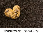 Potato In The Form Of Heart On...