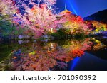 Small photo of Kiyomizudera Temple ponds and Sanjunoto. the autumn maple leaves illumination during the moonlight on November, Kyoto, Japan.