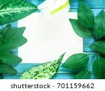 leaves and flowers have a... | Shutterstock . vector #701159662