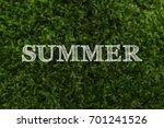 the word summer is written... | Shutterstock . vector #701241526