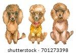 set of watercolor hand drawn... | Shutterstock . vector #701273398