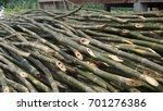pile of bamboo stalks. | Shutterstock . vector #701276386