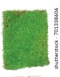 green grasses arena isolated on ... | Shutterstock . vector #701338606