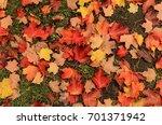 autumn natural flat background... | Shutterstock . vector #701371942