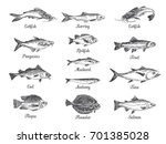 Vector Hand Drawn Set Of Fish...