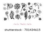 black and white vector set of...   Shutterstock .eps vector #701434615