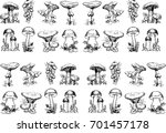 Edible Mushrooms.hand Drawn...