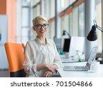 young female entrepreneur... | Shutterstock . vector #701504866