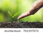 plant a tree natural background ... | Shutterstock . vector #701557072