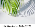 palm leaf and shadows on a... | Shutterstock . vector #701626282