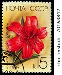 Small photo of USSR - CIRCA 1989: A stamp printed in the USSR showing Eclat du Soir Lily, circa 1989