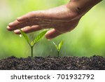 plant a tree natural background ... | Shutterstock . vector #701932792