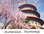 the beautiflu sakura garden... | Shutterstock . vector #701954968