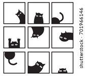 Black Cats In Nine Window...