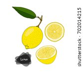 hand drawn sketch style lemon... | Shutterstock .eps vector #702014215