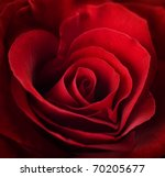 Stock photo valentine red rose heart shaped 70205677