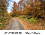 Landscape Of Autumn Forest ...