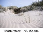 lyme grass on a dune near the... | Shutterstock . vector #702156586