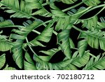 tropical leaves on a dark... | Shutterstock . vector #702180712