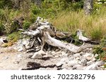 The Battered Coastline Of...