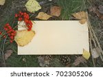 sheet of paper on the ground... | Shutterstock . vector #702305206
