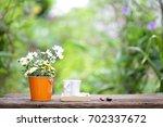flowers in orange pot with... | Shutterstock . vector #702337672