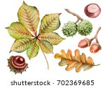 watercolor set of autumn leaves ... | Shutterstock . vector #702369685